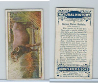 P72-115 Player, Natural History, 1924, #9 Indian Water Buffalo