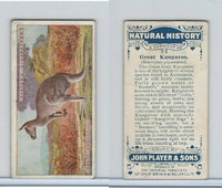 P72-115 Player, Natural History, 1924, #24 Great Kangaroo
