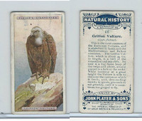 P72-115 Player, Natural History, 1924, #46 Griffon Vulture