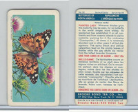 F450-6 Brook Bond, Butterflies North America, 1965, #18 Painted Lady