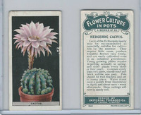 C13 Imperial Tobacco, Flower Culture, 1925, #10 Hedgehog Cactus