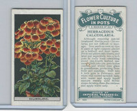 C13 Imperial Tobacco, Flower Culture, 1925, #11 Herbaceous Calceolaria