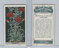 C13 Imperial Tobacco, Flower Culture, 1925, #13 Carnation