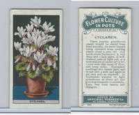 C13 Imperial Tobacco, Flower Culture, 1925, #19 Cyclamen
