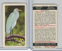 FC34-8 Brooke Bond, Tropical Birds, 1964, #1 Common Egret