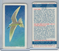 FC34-8 Brooke Bond, Tropical Birds, 1964, #10 Fairy Tern (Blue Back)