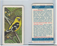 FC34-8 Brooke Bond, Tropical Birds, 1964, #48 Yellow Grosbeak