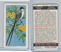 F450-5 Brooke Bond, Tropical Birds, 1964, #35 Fork Tailed Flycatcher