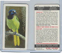 F450-5 Brooke Bond, Tropical Birds, 1964, #37 Green Jay