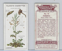 P72-136 Player, Struggle For Existence, 1923, #16 Hairy Ritter Cress