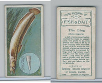 C11 Imperial Tobacco, Fish & Bait, 1924, #33 Ling