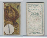 C11 Imperial Tobacco, Fish & Bait, 1924, #40 Turbot