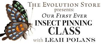 pin-class-banner2.jpg