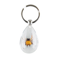 Spiny Spider Keychain-Clear