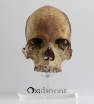 01-skull-109-front-view-evolution-store