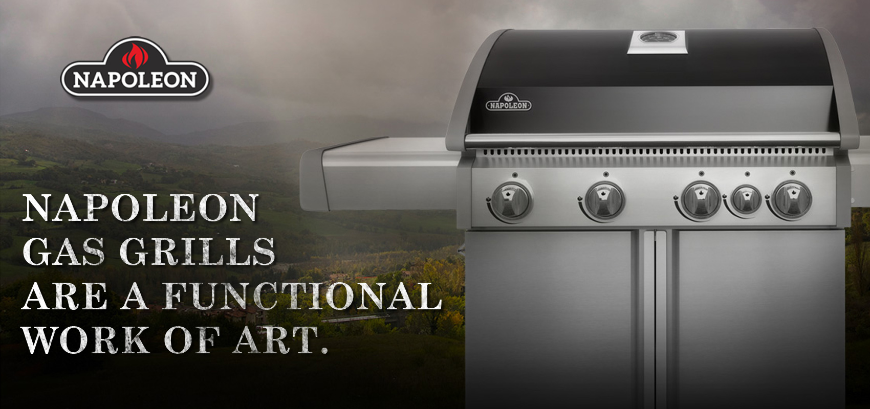 Napoleon Gas Barbecue Grills, NH