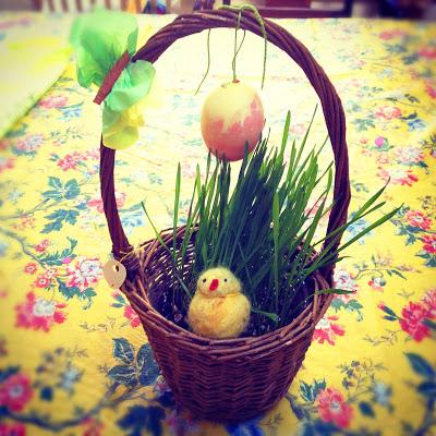 spring-ebook-photo.jpg