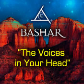 The Voices in Your Head - 4 CD Set