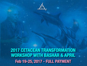 Cetacean Transformation Feb 19-25, 2017 - FULL PAYMENT