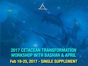 Cetacean Transformation Feb 19-25, 2017 - SINGLE SUPPLEMENT