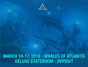 Whales of Atlantis Workshop March 10-17, 2018 - Deluxe Stateroom Deposit