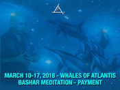 Whales of Atlantis Workshop March 10-17, 2018 - Payment