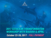 Cetacean Transformation Oct 22-28, 2017 - FULL PAYMENT