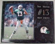 Dan Marino Miami Dolphins NFL 15x12 Plaque