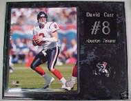 David Carr Houston Texans 15x12 Plaque