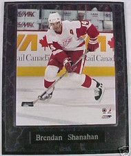 Brendan Shanahan Detroit Red Wings 10.5x13 Plaque