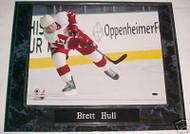 Brett Hull Detroit Red Wings 10.5x13 Plaque