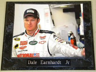 Dale Earnhardt Jr. NASCAR 10.5x13 Plaque