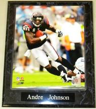 Andre Johnson Houston Texans NFL 10.5x13 Plaque