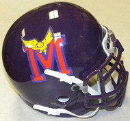 Minnesota Screaming Eagles Coach TV Show Football Authentic Mini Helmet