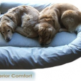 Memory-Foam Dog Beds