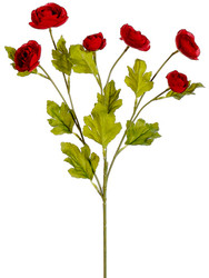 "RANUNCULUS SPRAY 26"" RED"