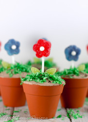 BAKING CUPS SILICONE FLOWER POT 12 CT
