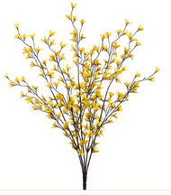 "FORSYTHIAx5 27"" YELLOW"