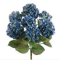 "HYDRANGEA BUSH  BLUE 20"""
