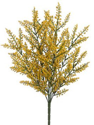 ASTILBE BUSH YELLOW X9 20""