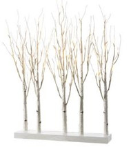 BIRCH GROVE  LED LIGHTED 30""