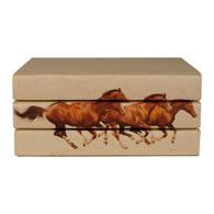 Horses 3 Vol.