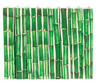 Bamboo (Priced per book)