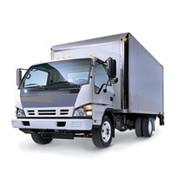 Mongoose M24 24-Volt Vehicle Alarm