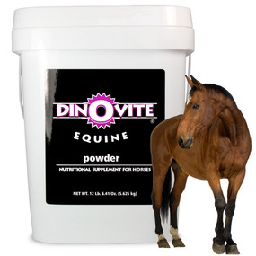 Dinovite Equine