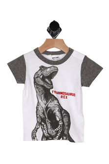 front shows print of tyrannosaurus Rex and on white background with contrasting heather grey sleeves