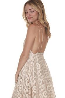 Just Like Honey Lace Dress