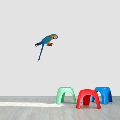 "Real Life Parrot Printed Wall Decal 15"" wide x 18"" tall Sample Image"
