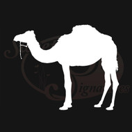 Camel Vehicle Decals Stickers