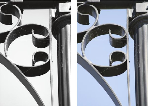 Letter Photography - Letter C - Metal Wall Art and Wall Decal Prints